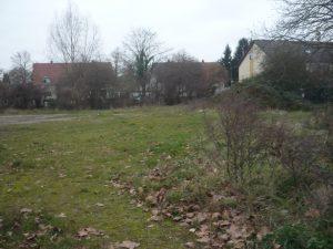 Wildwuchs und Schotter auf dem früheren Festplatz Niederbrückl