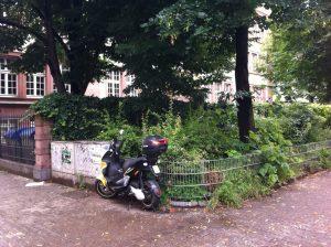 Der Grünstreifen entlang der Mozartschule soll ein Schulgarten werden